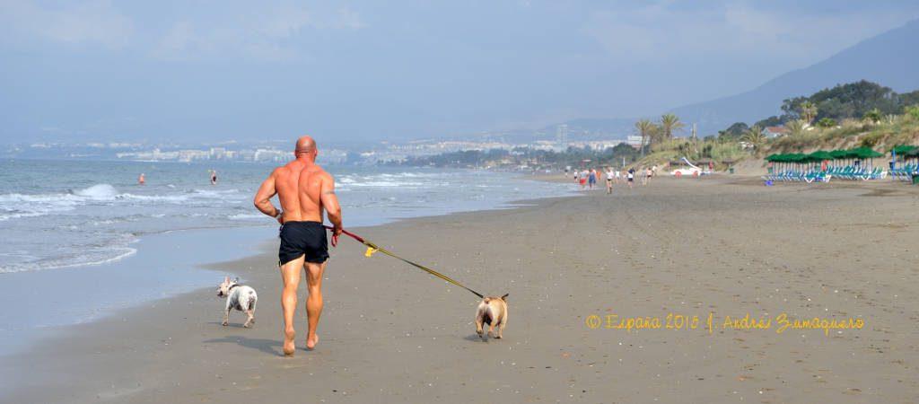 atleta_y_perros_20150520_100723_marbella_1024