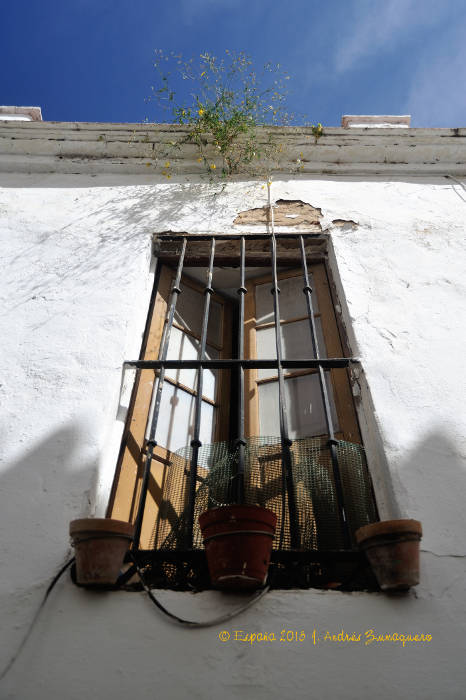 ventana_20150419_121954_marbella_700